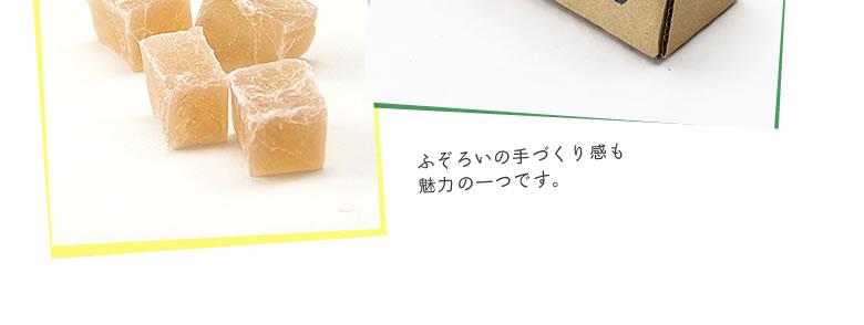 プシプシーナ珈琲_ショウガトウ_05