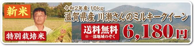 川瀬さんミルキー10kg