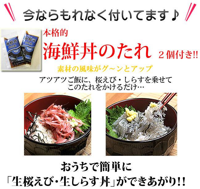 生桜えび丼生しらすどんのすすめ 豪華海鮮丼