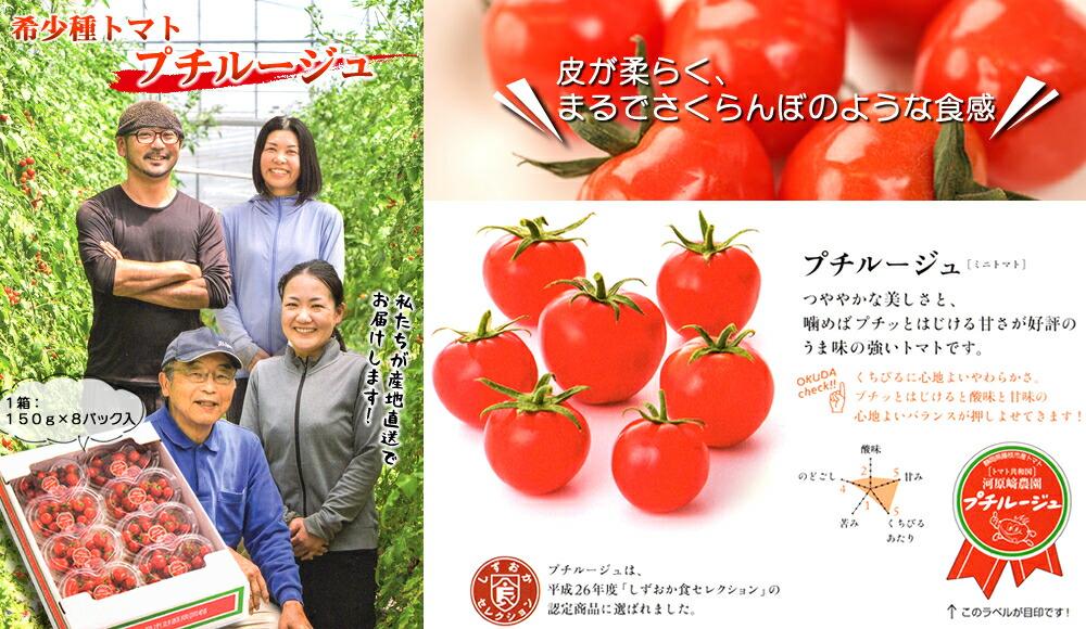 数量限定トマト《プチルージュ1.2Kg》〈150g×8パック〉産地直送
