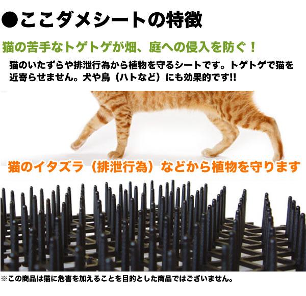 猫の苦手なトゲトゲが畑、庭への侵入を防ぐ ココダメシート