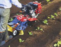 中耕培土作業 HONDA 耕運機 耕耘機 耕うん機