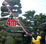 4mの噴射で高い木もOK