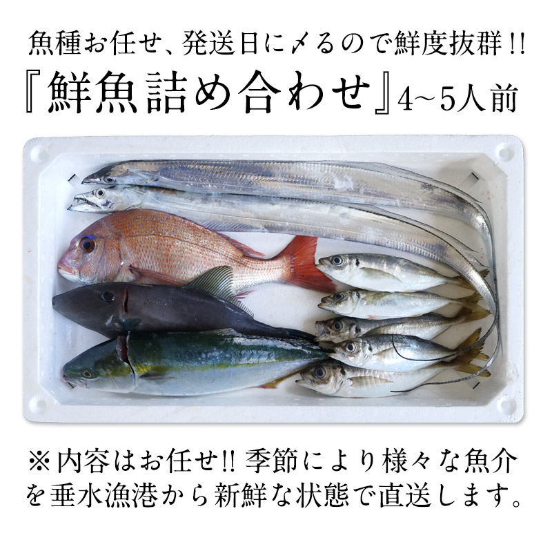 鮮魚セット
