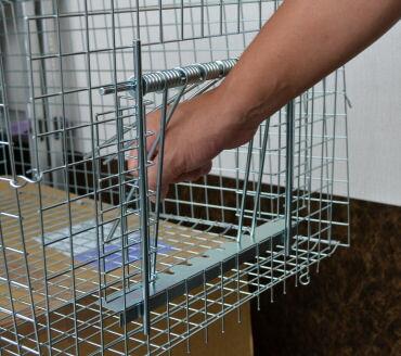 鳥類捕獲 ハト捕獲器