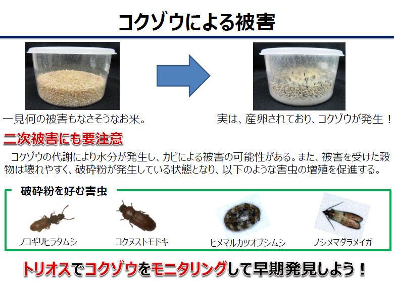 米害虫駆除
