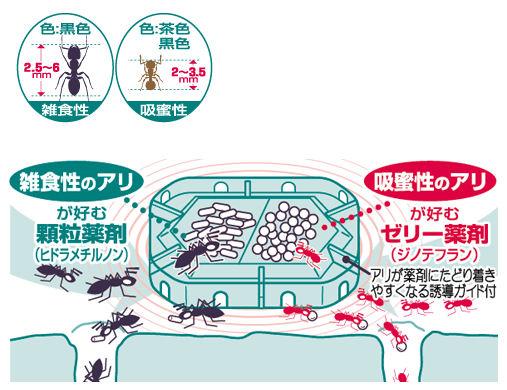 アース製薬株式会社 スーパーアリの巣コロリ