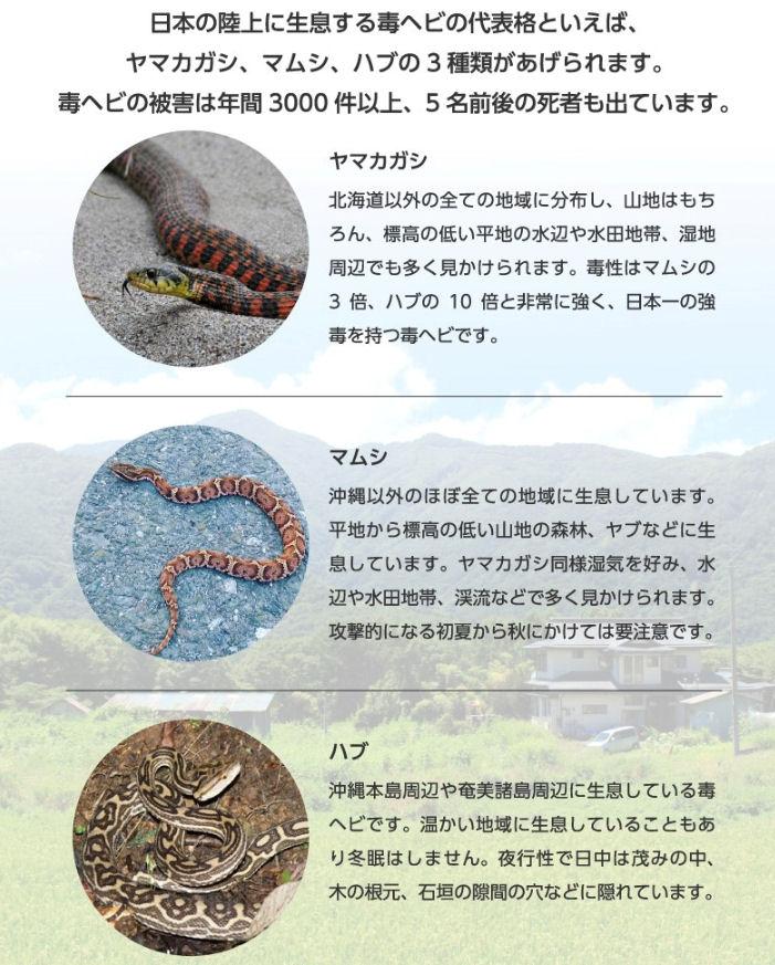 ヘビ用エアゾール 300ml 屋外用ヘビ退治 ヘビ駆除スプレー