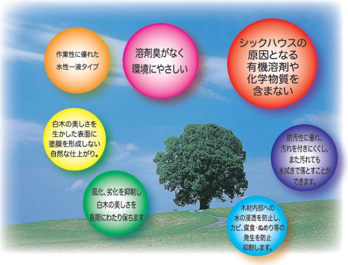 株式会社ミヤキ 木肌一番エコ