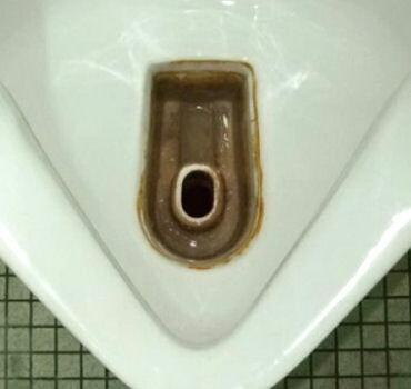 尿石防止剤 テイクワン