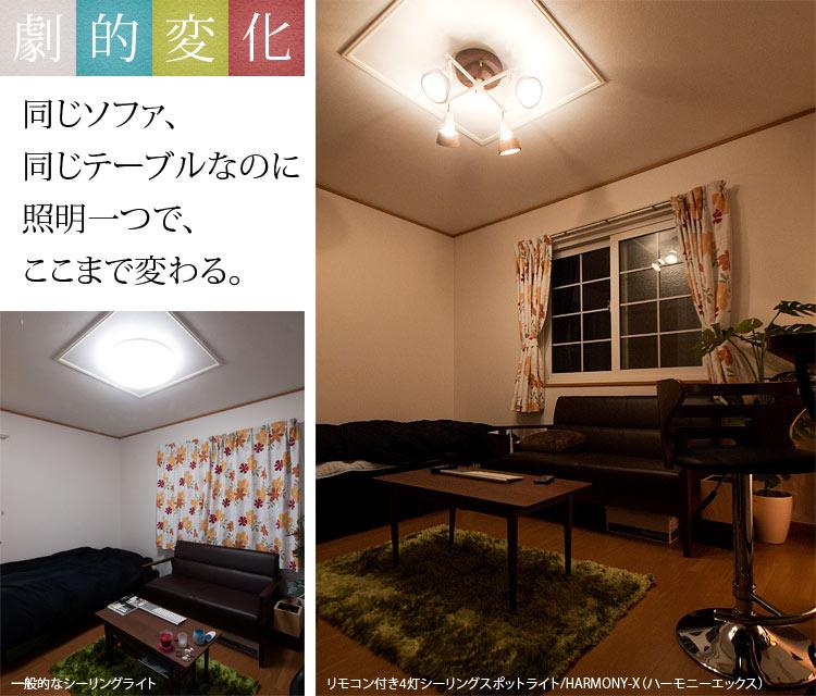 スポットライト HARMONY/ハーモニー