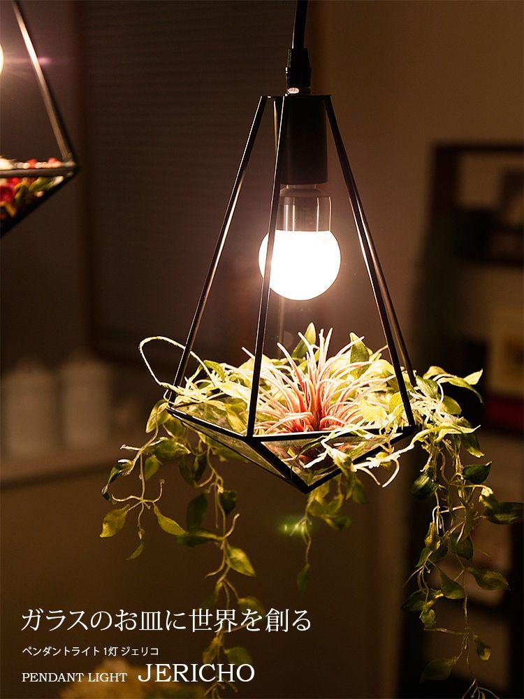 ガラスのお皿に世界を創る ペンダントライト 1灯 ジェリコ