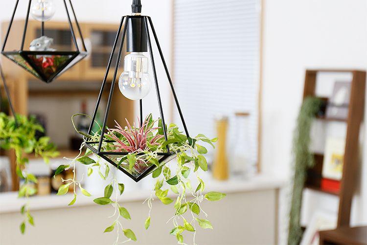 いなざうるす屋さんのフェイクグリーン「ティランジア ボルドー」と「垂れる葉っぱS」を飾った消灯イメージ
