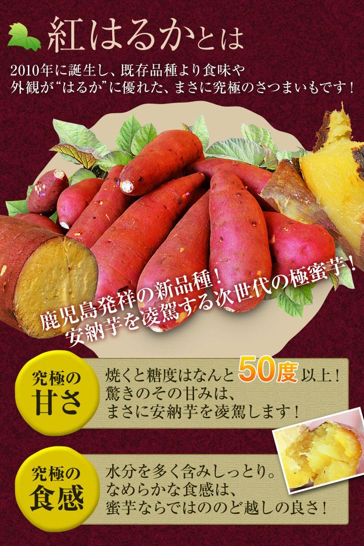 冷凍焼き芋 紅はるか 1kg アイス感覚で食べれます。安納芋もあります。さつまいも 鹿児島産 送料無料 冷やし焼き芋