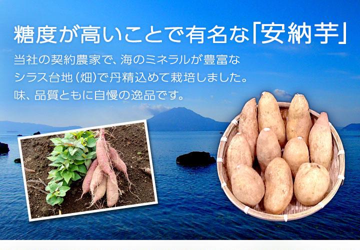 【【畑の金貨】 鹿児島県産 安納芋のジャム 150g 3本セット 鹿児島産の安納芋を贅沢に使用しています。