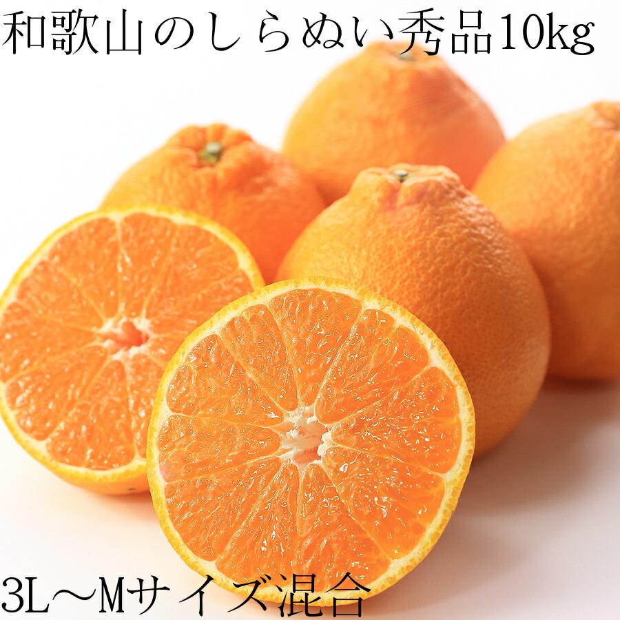 【送料無料】和歌山の甘熟濃厚しらぬい(デコポン)秀品3L〜Mサイズ混合 10kg 40〜60個