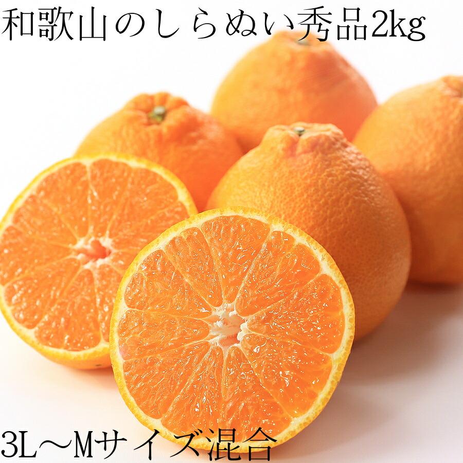 【送料無料】和歌山の甘熟濃厚しらぬい(デコポン)秀品3L〜Mサイズ混合2kg 8〜12個