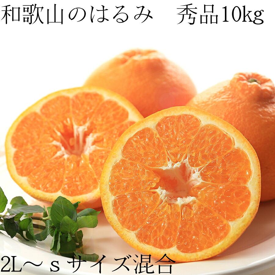 【送料無料】和歌山のはるみ 秀品2L〜Sサイズ混合 10kg 50〜70個