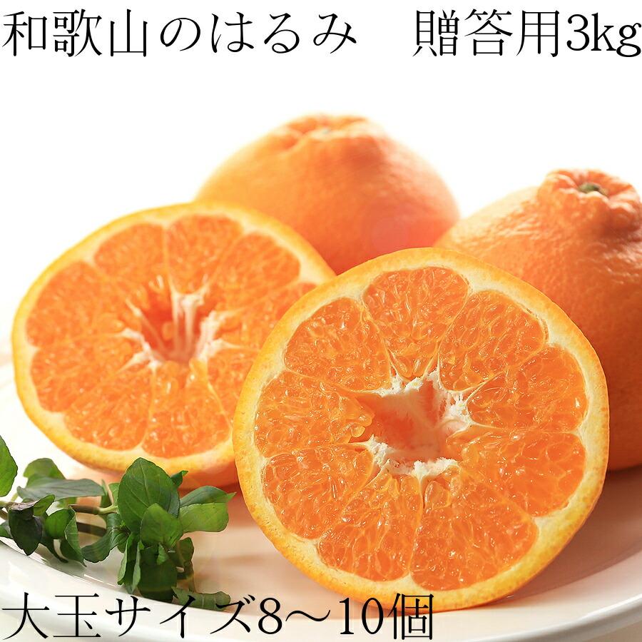 【送料無料】和歌山のはるみ 贈答用3kg 大玉8〜10玉