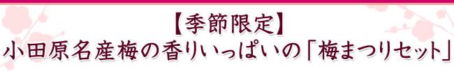 【季節限定】小田原名産梅の香りいっぱいの「梅まつりセット」