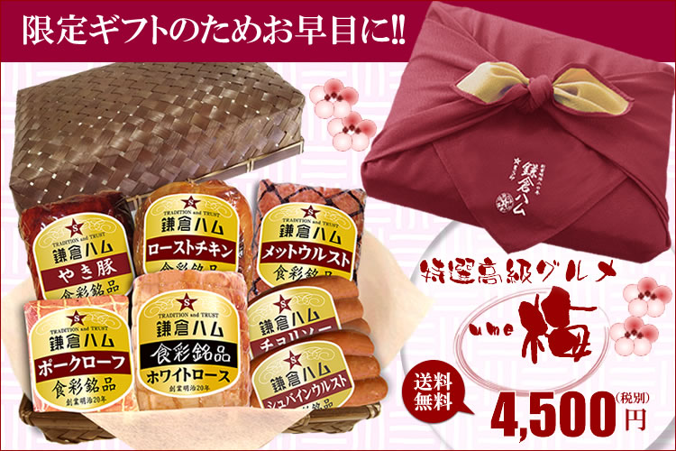 梅⇒4500円送料無料