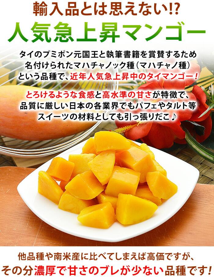 タイのプミポン元国王と執筆書籍を賞賛するため名付けられたマハチャノック種(マハチャノ種)という品種で、近年人気急上昇中のタイマンゴー!とろけるような食感と高水準の甘さが特徴で、品質に厳しい日本の各業界でもパフェやタルト等スイーツの材料としても引っ張りだこ♪多品種や南米産に比べてしまえば高価ですが、その分濃厚で甘さのブレが少ない品種です!