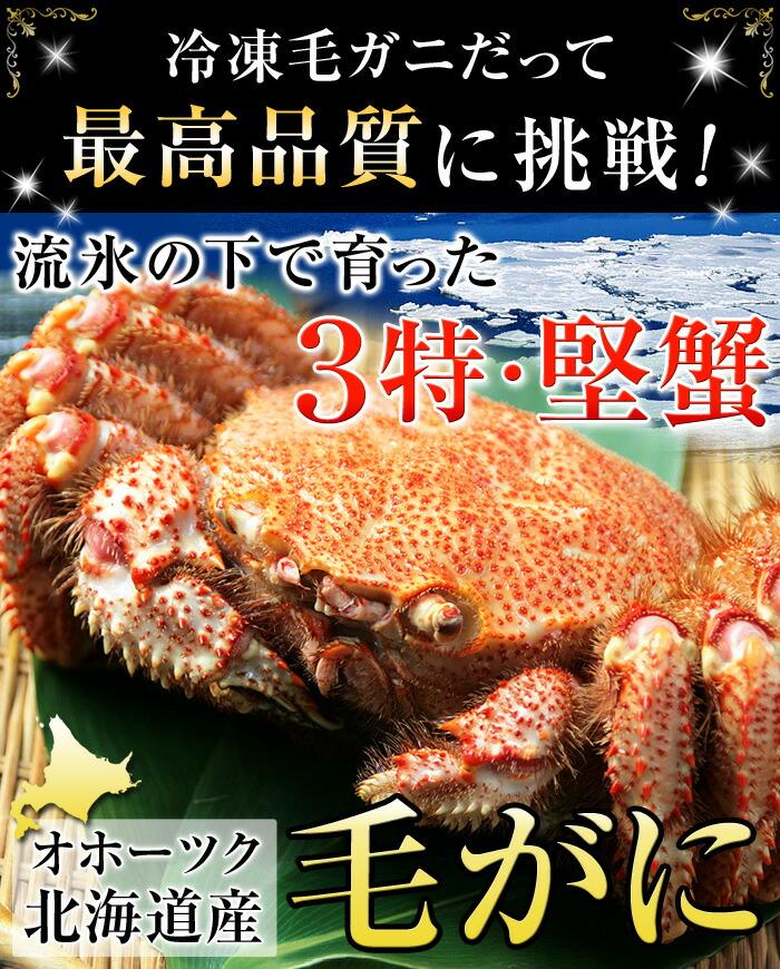 冷凍毛ガニだって最高品質に挑戦!流氷の下で育った3特堅蟹!オホーツク北海道産毛ガニ