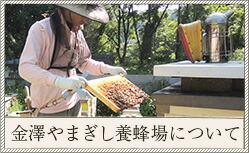 金澤やまぎし養蜂場について