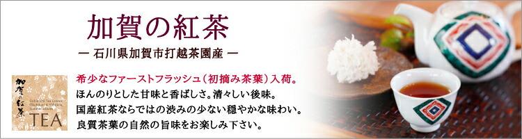 加賀の紅茶
