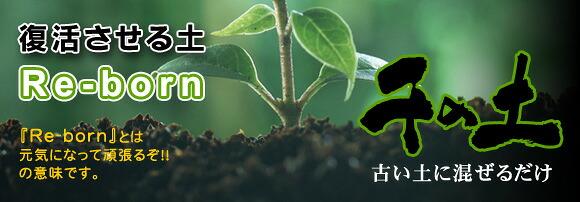土壌改良材泥炭入り 千の土