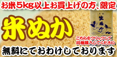 米ぬか 同梱 500g プレゼント