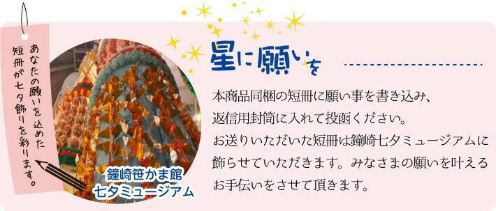 あなたの願いの込めた短冊が七夕飾りを彩ります
