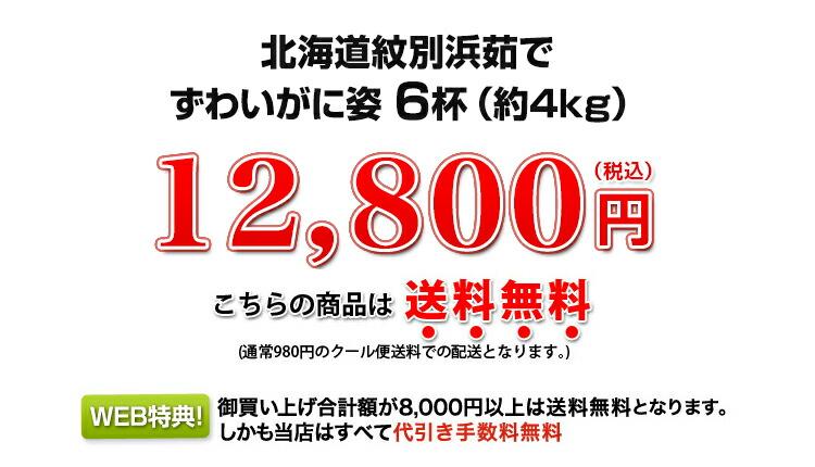8,800円(税込)