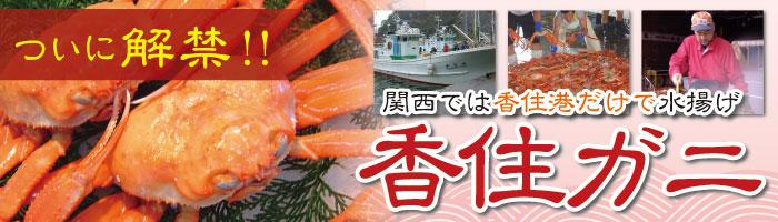 """""""新発売!魚魚唐シリーズ"""""""