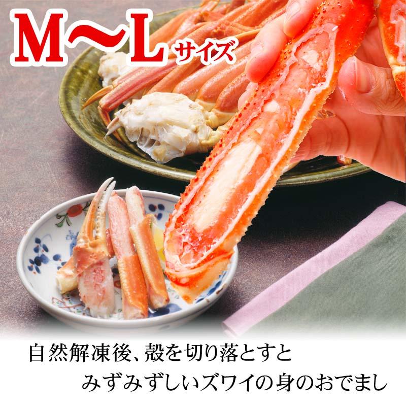 ずわい蟹 足サイズM〜L