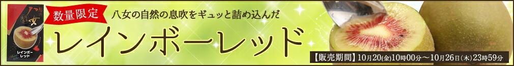 福岡県八女産レインボーレッドキウイ数量限定販売