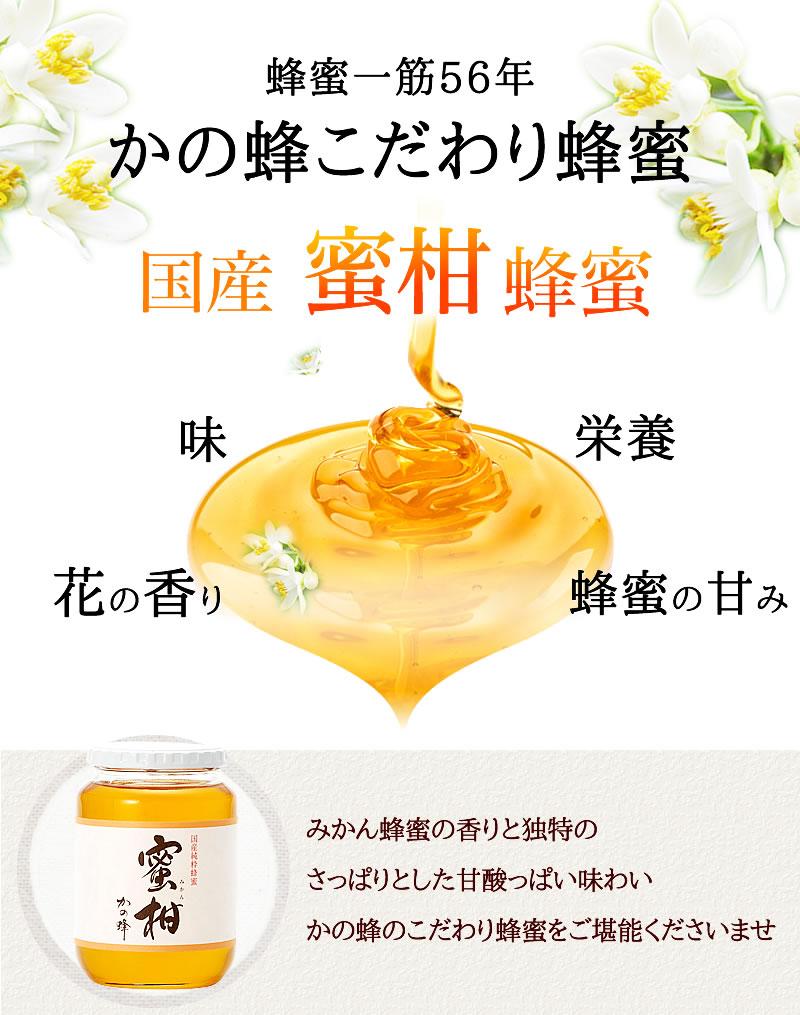 国産みかん蜂蜜(はちみつ)