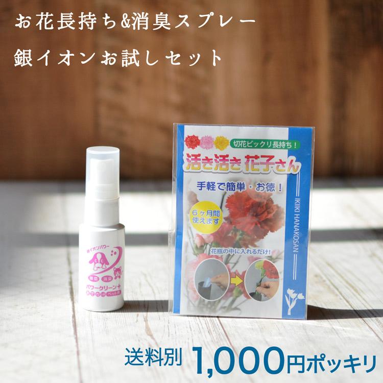パワークリーンペットミニと活き活き花子さんのセット