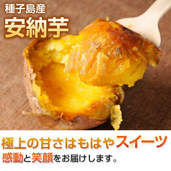 種子島産安納芋 極上の甘さはもはやスイーツ
