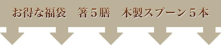 お得な箸5膳 木製スプーン5本