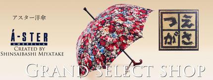 アスターつえ傘