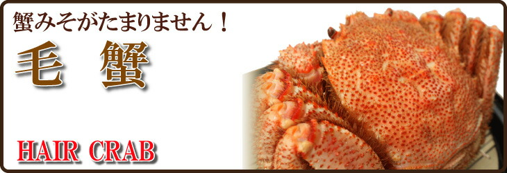 稚内産毛蟹
