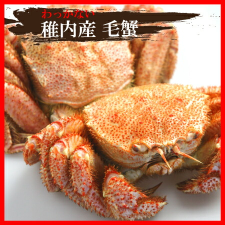 稚内産毛蟹セット