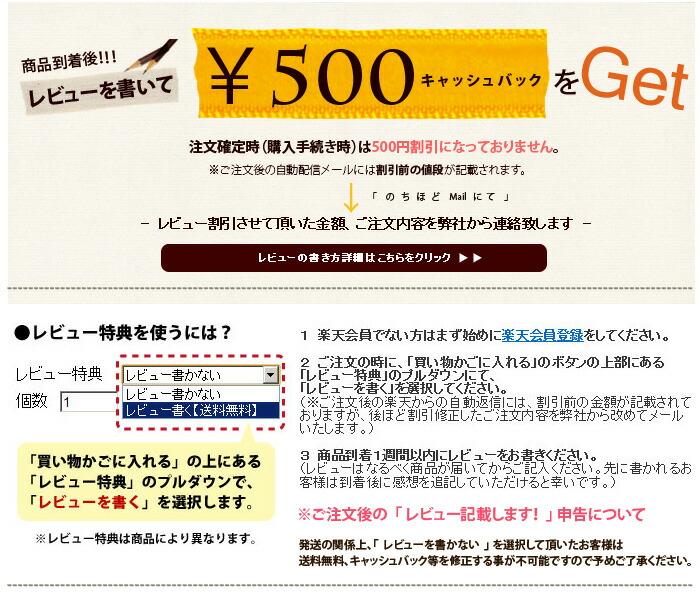 レビューを書いて500円キャッシュバック