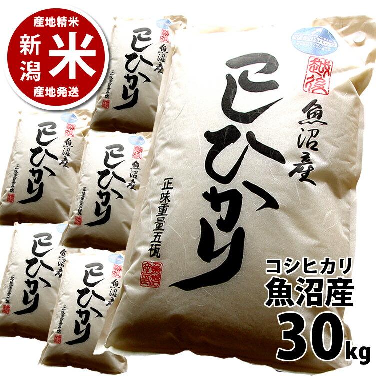 新潟 魚沼産 コシヒカリ30kg