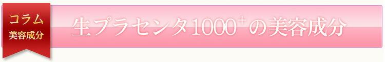 プラセンタ1000+の美容成分
