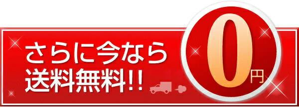 ストラスバリウスのみ今だけ北海道から沖縄まで離島も含めて送料無料