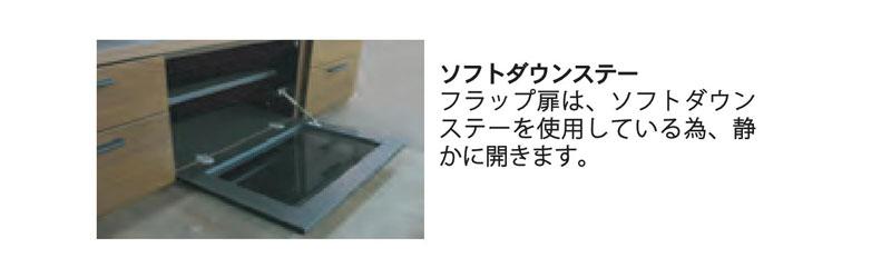 詳細ソフトダウン