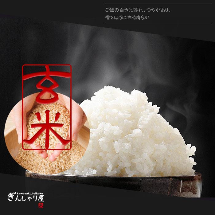 ゆきさやか玄米