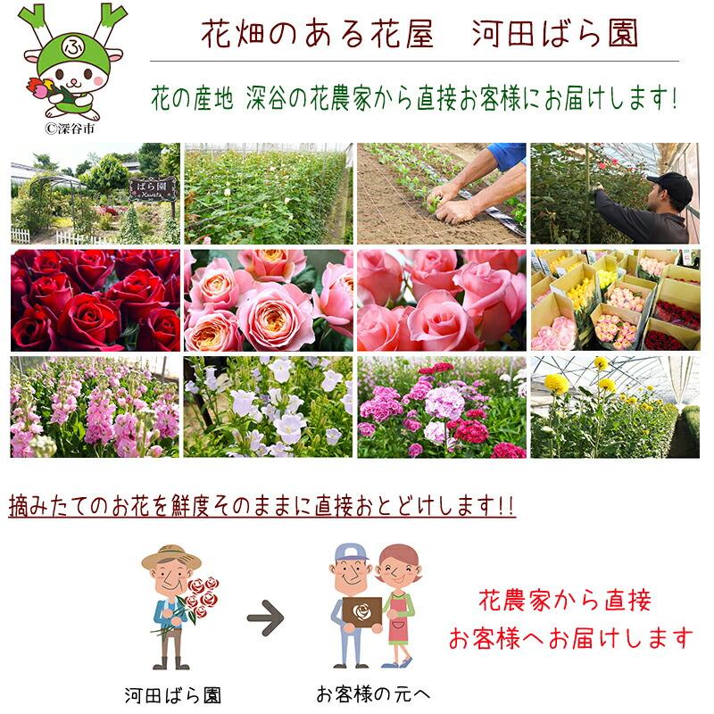 摘みたての花を鮮度そのままに直接お届けします